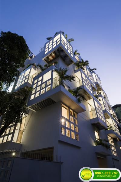 thiết kế thi công vườn trên mái 2