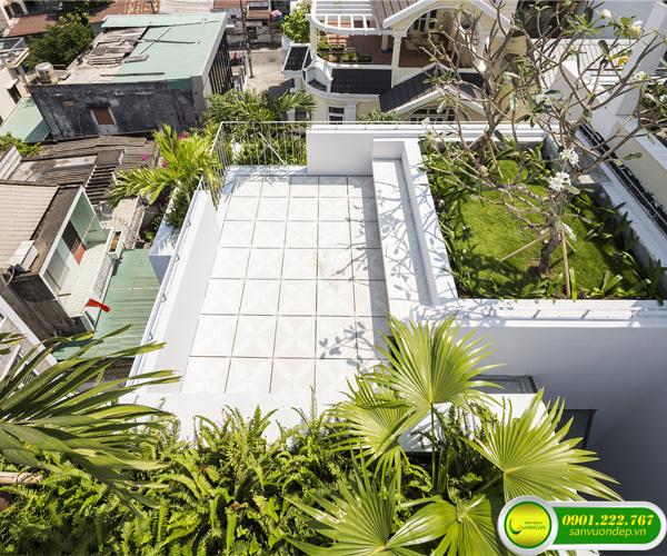 thi công vườn trên mái 3
