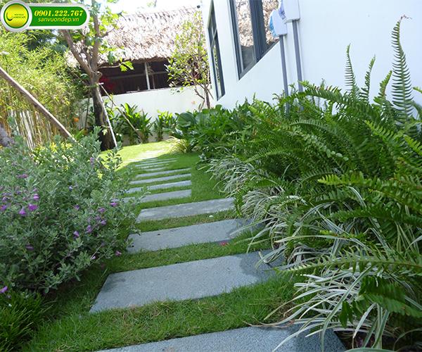 Dịch vụ trồng cây cảnh