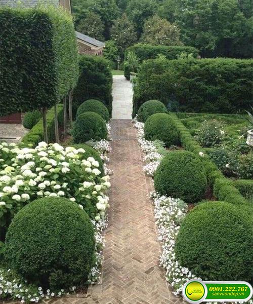 Quy trình bảo dưỡng sân vườn sau thi công