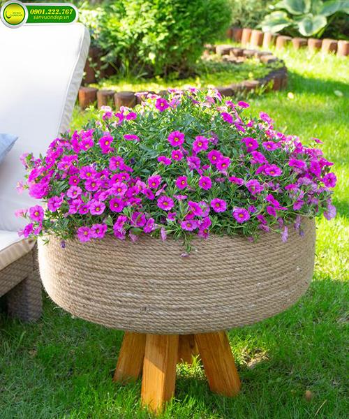 bồn hoa trước nhà