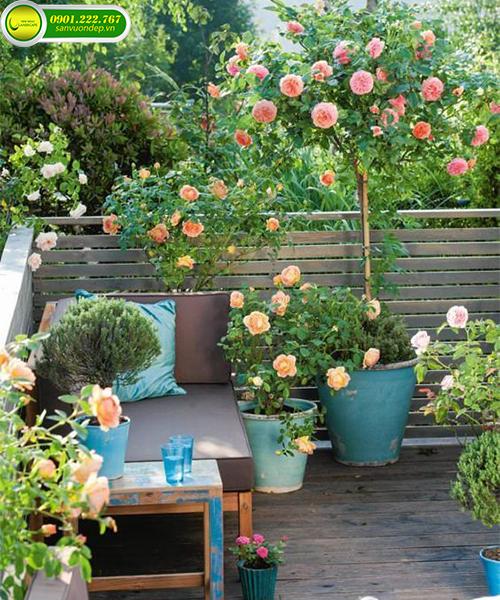 vườn hoa ban công