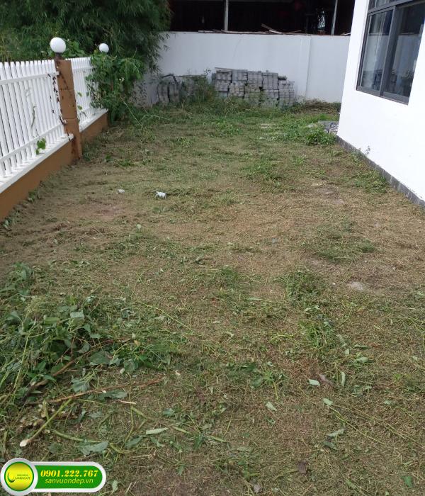 xử lý mặt bằng sân vườn